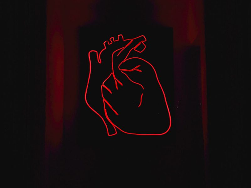 Ama tu corazón